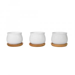 Beautiful Round Lipped White Ceramic Plant Pot Set with Bamboo Coasters