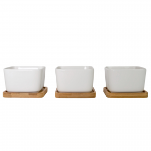 Beautiful Rounded Square Ceramic White Tabletop Plant Pot Set w/ Bamboo Coasters