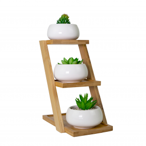 Stylish Slanted White Ceramic Tabletop Plant Pot Display Set with Bamboo Stand