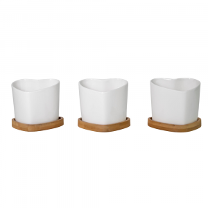 Beautiful Heart-shaped Ceramic White Tabletop Plant Pot Set with Bamboo Coasters