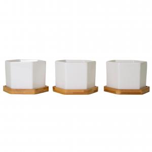 Sleek Modern Hexagonal Ceramic White Tabletop Plant Pot Set with Bamboo Coasters