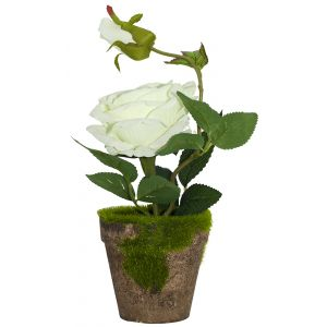 Gorgeous Artificial White Rose in Rustic Brown Clay Pot