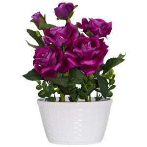 Stunning Fuschia Pink Roses in White Wicker Style Ceramic Vase