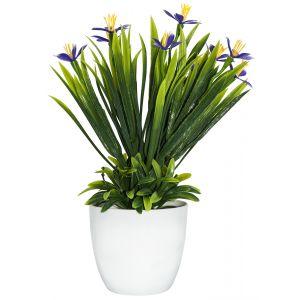 Artificial Mini Purple and Yellow Daffodils in White Plastic Vase